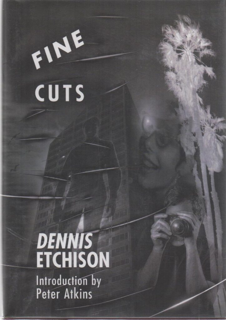 Fine Cuts book cover